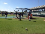 Twins take BP before game