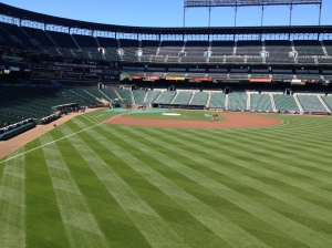 View from new lower RF seats
