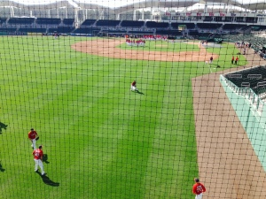 View from inside Green Monster