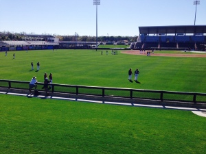 View from left-field berm